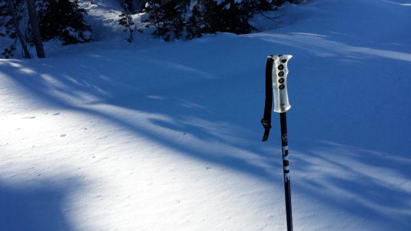 sunny lyte probe