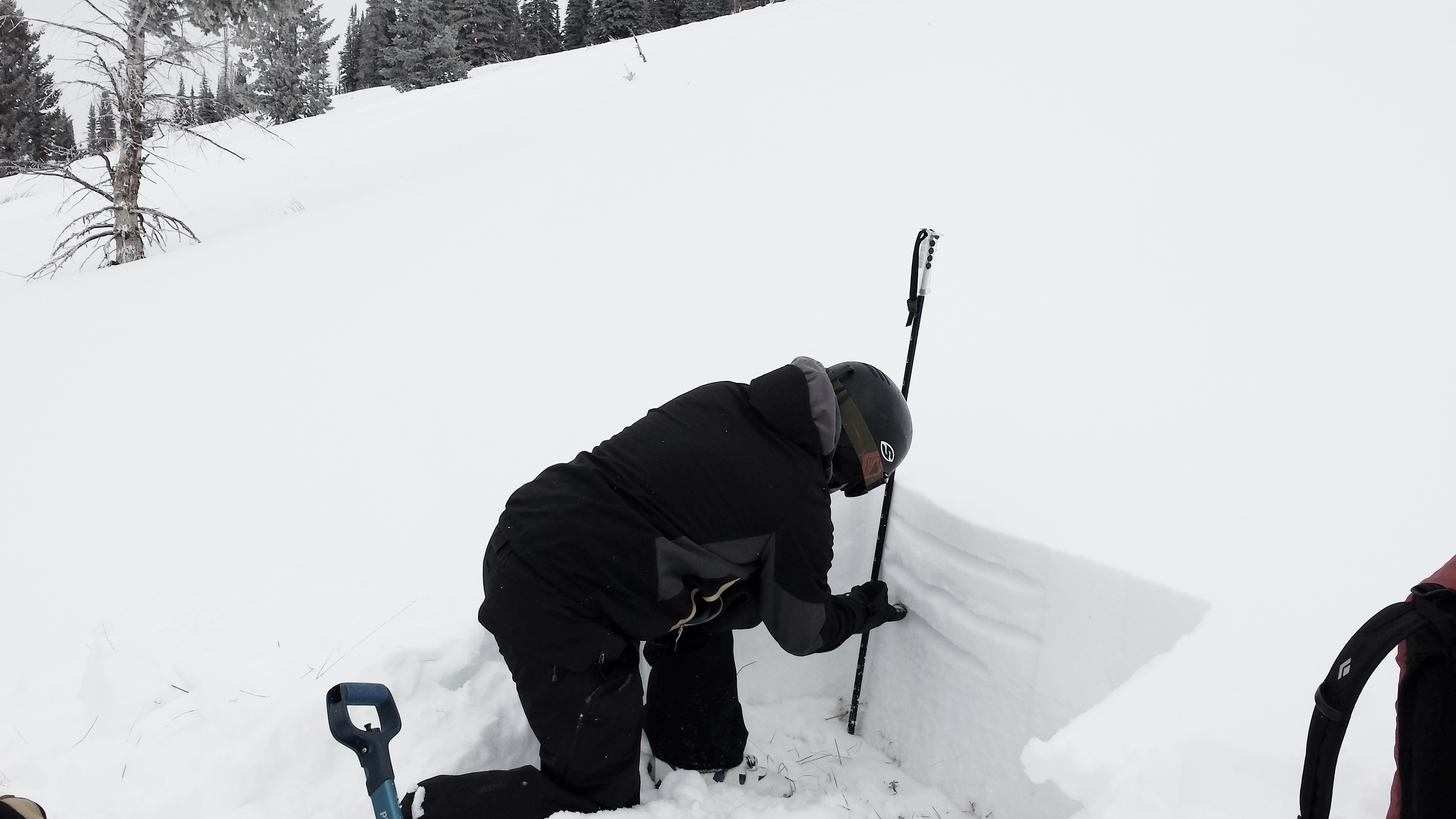 Shallow snow pack examined by the SAC